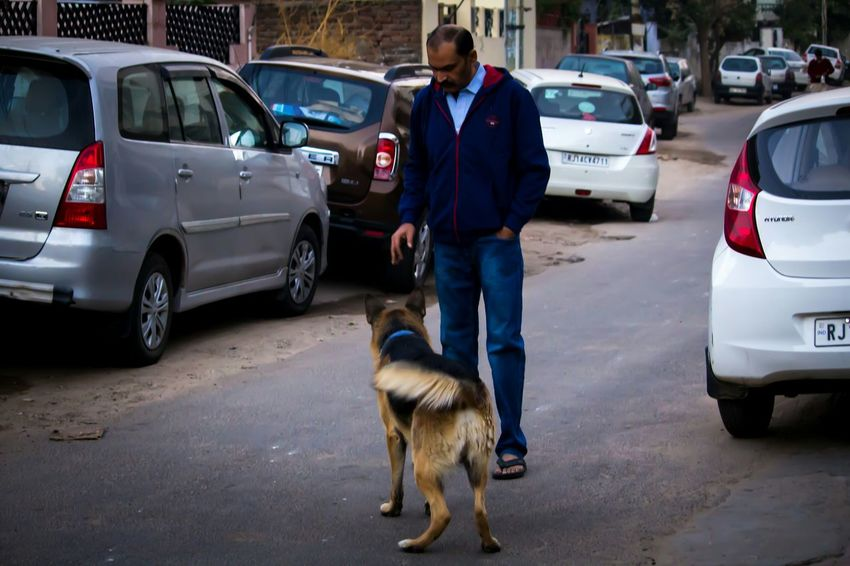 ...because dog is the man's best friend. 💜 Car Police Force Mature Adult Mature Men Traffic Accident One Mature Man Only Police Car Only Men Adult Men Dog Full Length Road One Man Only One Person Pets People Uniform Adults Only Arrest German Shepherd Streetphotography Army Training Welcome Weekly