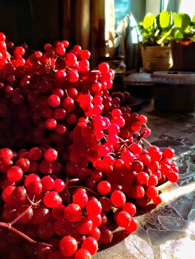 Summer gifts can be estimated only in the autumn. Red Fruit Freshness Close-up Sweet Food Dessert No People калина красная Beauty In Nature Viburnum Autumn🍁🍁🍁 Lukhovitsy BeardMan ♡♡ Beauty Photography Landscape Eyeemmarket Viburnum Bodnatense