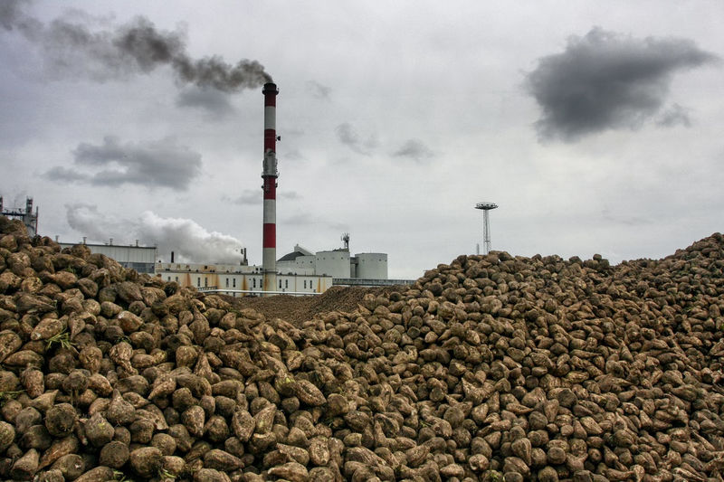 Chimney Industry Productions Sugar Factory Beets Building Exterior Built Structure Cloud - Sky Day Factory Food Industry Industry Low Angle View No People Outdoors Sky Smoke Stack Sugar Beets Technology