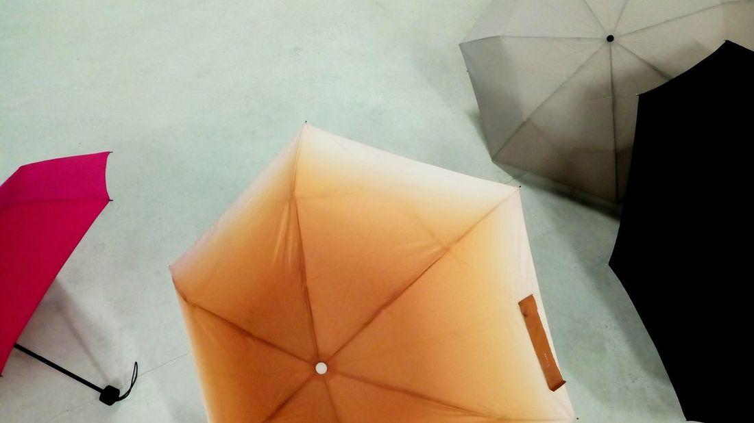 Umbella Collection Umbrella Time Rainy Day Rainy Days Protection Indoors  Umbrella Minimalism