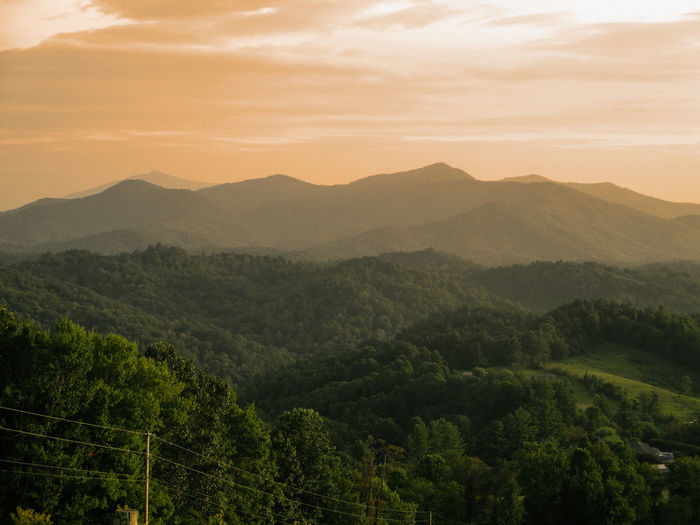 Smokey Mountains, NC Beauty In Nature Cloud - Sky Environment Forest Landscape Mountain Mountain Range Nature Rolling Landscape Scenics - Nature Sky Tree WoodLand