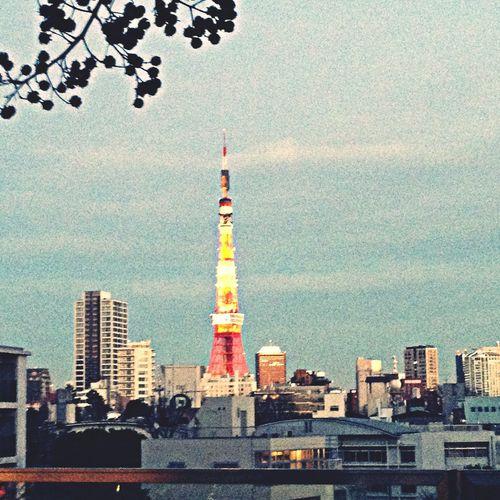 Tokyo Tower Tokyo Night Lights Taking Photos