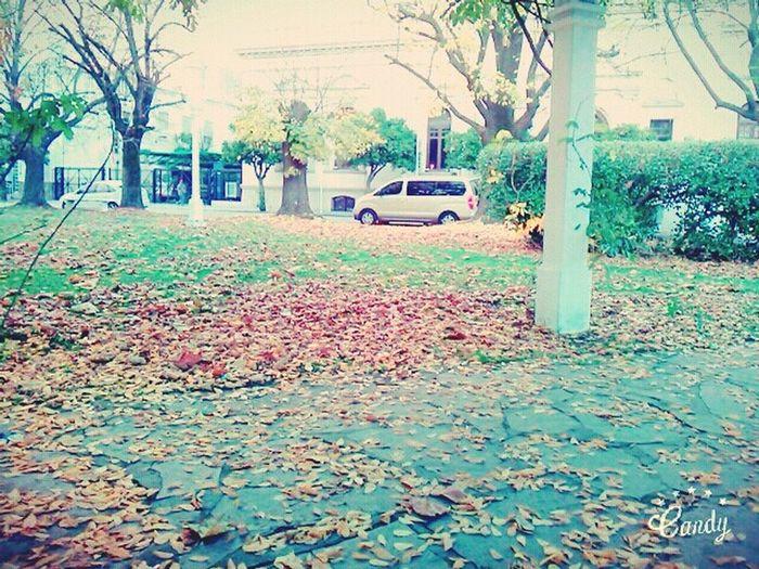 Balcacity Domingo Plaza First Eyeem Photo