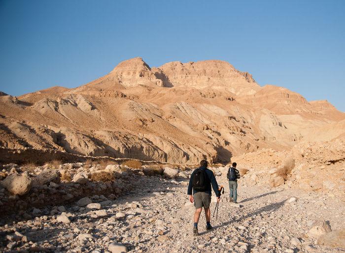 Rear view of men walking on mountain against clear sky
