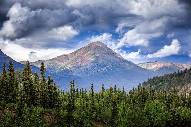 View of alaskan mountain range in denali national park, alaska