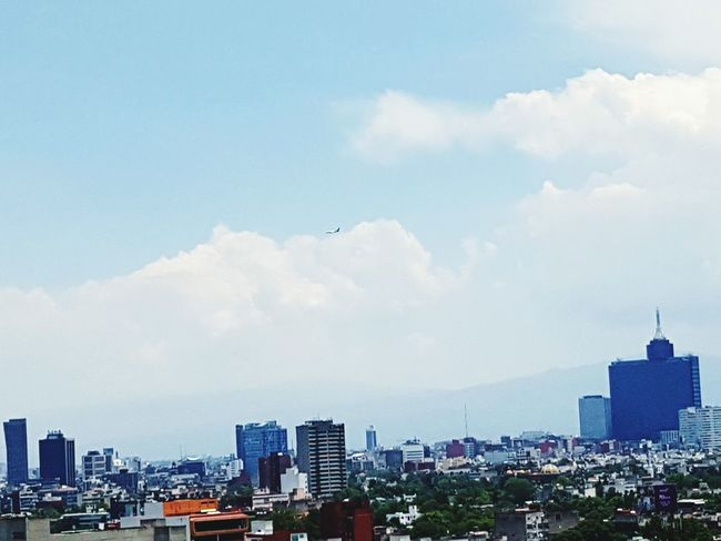 Landscape_Collection Buildings & Sky AirPlane ✈ Mexico City Architecture