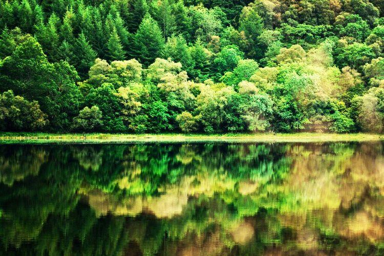 Symmetrical Loch Katrine, Stirling, Scotland, UK,