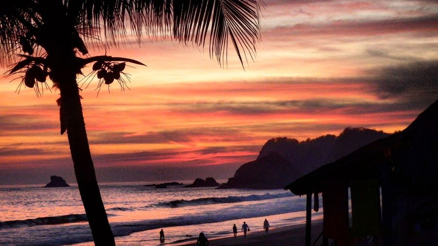 Sonnenuntergang Meer Pazifik Palmen Roter Himmel Himmel Wolken Strand   Sunset Red Sky Sky Sky And Sand Sea Beach Palm Trees PalmHouse   Pacific Ocean Zipolite Mexico