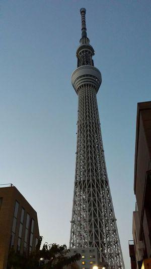 空 Sky_collection Skytree 夕暮