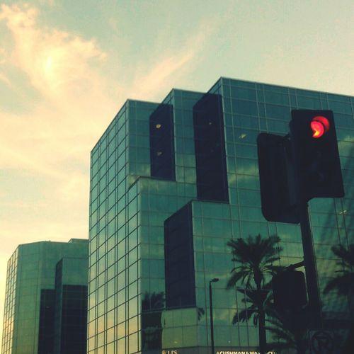 CaliBound Goodbyephoenix Sunset Citylife