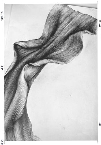 Drawing of a spider lily petal, finally done. This is to becoma a reference for a dyed silk something -a dress? Not sure yet. Abstract Art Art, Drawing, Creativity