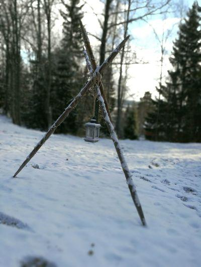 Winter Finland Outdoors First Eyeem Photo