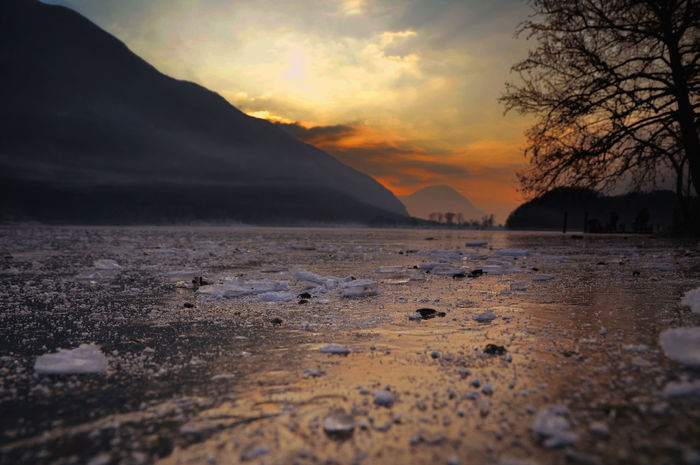 Frozen alpine lake in sunset in Lombardy, Italy. Beauty In Nature Branch Cloud - Sky Cold Temperature Color Dawn Dusk Frozen Lake Ice Idyllic Low Angle View Low Section Mountain Mountain Range Nature No People Outdoors Reflection Scenics Sunset Tranquil Scene Tranquility Tree Water Winter