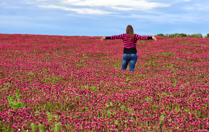 Enjoying The View From Behind Beauty In Nature Casual Clothing Enjoying Life Field Flower Flowerbed Flowering Plant Freshness Human Arm Landscape Leisure Activity Lifestyles One Person Real People Red Color Red Flower spring into spring Springtime