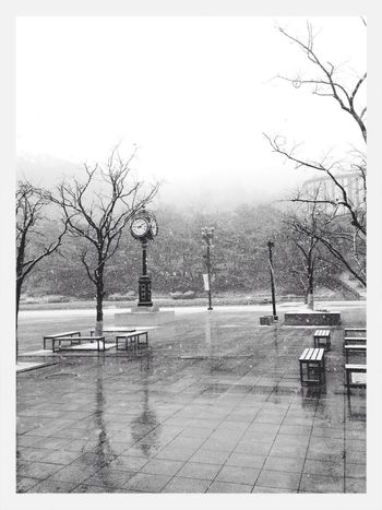 눈 내리는 날 출근 :) Snow Winter Winter White By CanvasPop