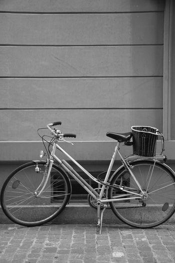 Bicycle Bicicleta Alone Transportation Mode Of Transport Land Vehicle No People
