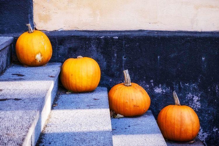 Pumpkins Pumpkins Fruits Stairs EyeEm Stockholm