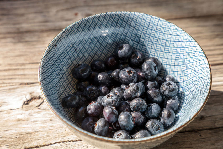 Organic blueberries in a blue and white bowl on the rustic wood background of an old farm table in autumn. Agriculture Eat Healthy Farm Healthy Snack Natural Nature Antioxidants Blue Berry Blue Bowl Blueberries Blueberry Bowl Farm To Table Food Fruit Fruit Bowl Healthy Food Organic Produce Raw Food