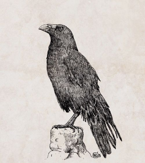 Crow Art # Nucciogarilli #artist Silence My Art Work