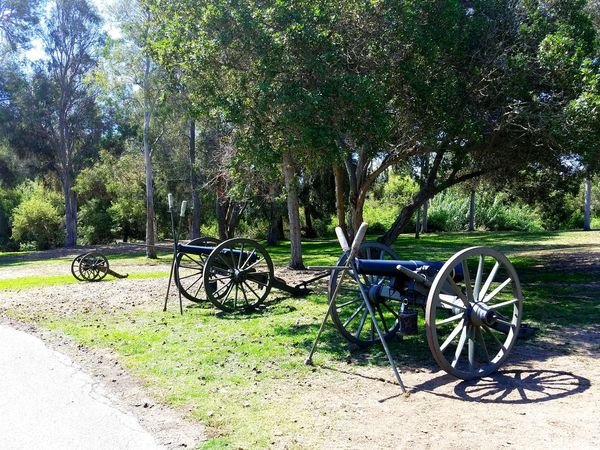 Civil War Days going on at the Huntington Beach Central park this weekend Canon Civil War History Civil War Re-enactments Park Outdoors Scenics Tree