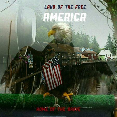Overlay Bald Eagle American Flag Freedom Symbolism Proud Webdesign Postcards Posters U.S.