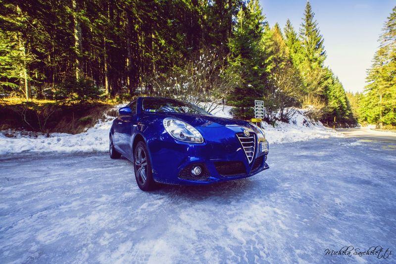 Into the Wild💙 Giulietta Alfaromeo Alfa Romeo Car Sport Nature Wood Snow Photography Photo Hopephoto Love Like Auto Italy Blue Enjoying Life Wildlife Wild Amazing Nikon NikonD800 Nikonphotography Street Traveling