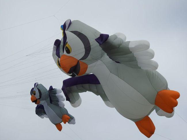 Sport Outdoors Sky Ballooning Festival Flying