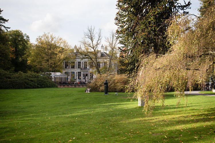 Lawn in park