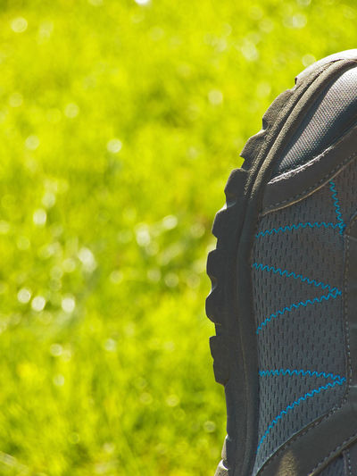 Gray blue shoe with sunny light part against green grass close up One Trekking Right Grass Focus On Foreground Close-up