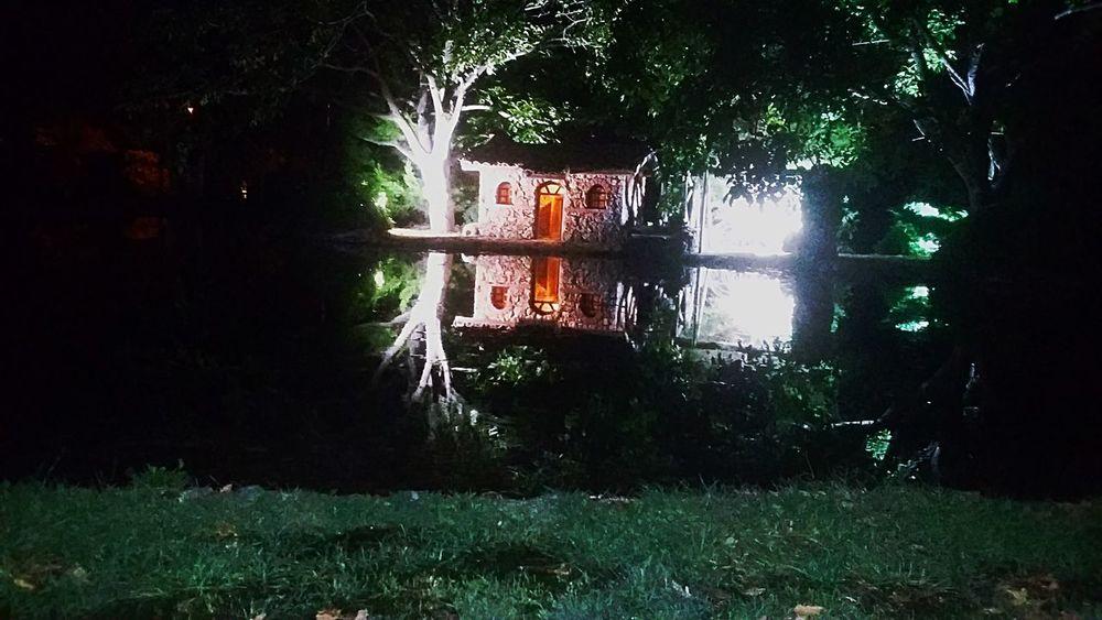 #night #trees #lake #denizli #çamlık #nature #reflection Water Reflection Outdoors Tree Grass Nature Lake Night EyeEmNewHere