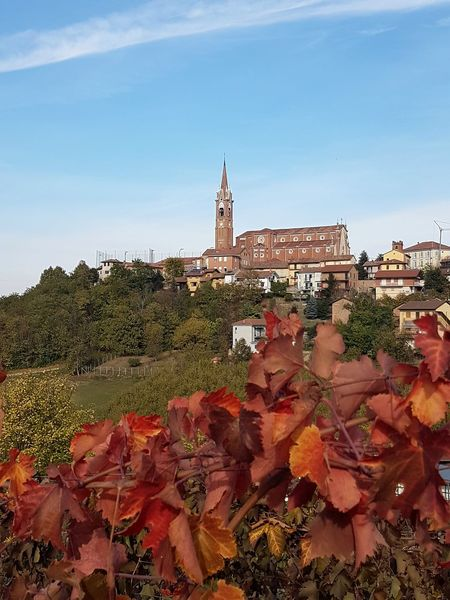 Langhe Roero Tranquility Vineyards In Autumn Autumn Colors Autumn Leaves Village Village View Architecture Clock Tower History Travel Destinations No People Autumn Building Exterior Outdoors Day City Cityscape Tree Clock Sky Clock Face