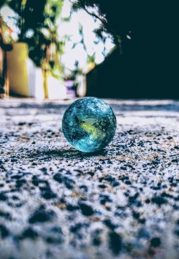 Fun time Close-up Reflection No People Crystal Marbles Indoors  Day Fragility Tree Shiny Colors Bright Beautiful Love Life Picoftheday Photooftheday Photography Nature Photography Happiness Blue Green Colors Of Life Color Selective Focus EyeEmNewHere EyeEm Selects