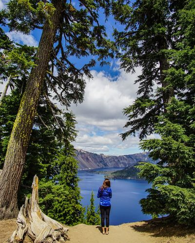 Rear View Of Woman Standing On Field By Trees At Crater Lake National Park Against Cloudy Sky