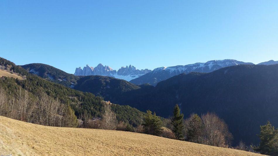 Mountain Blue Mountain Range Landscape Nature Travel Sky Travel Destinations Outdoors Forest Beauty In Nature No People Plose Südtirol Alto Adige