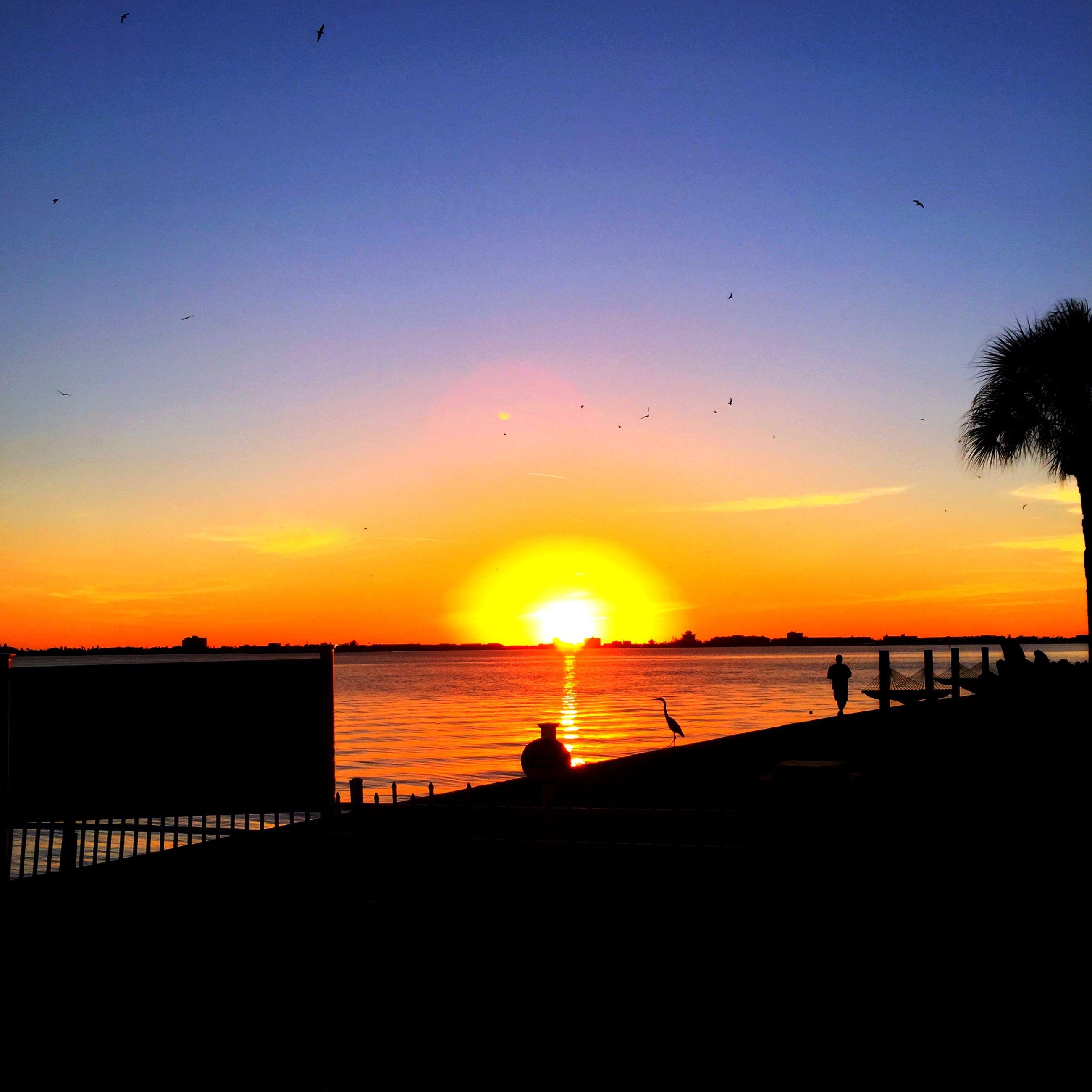 sunset, silhouette, sun, water, scenics, orange color, sea, beauty in nature, tranquil scene, horizon over water, sky, tranquility, idyllic, nature, bird, sunlight, beach, reflection, animal themes, outdoors