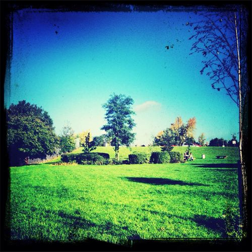 Sun is Shining, this weather is sweet Weather Autumn London Park