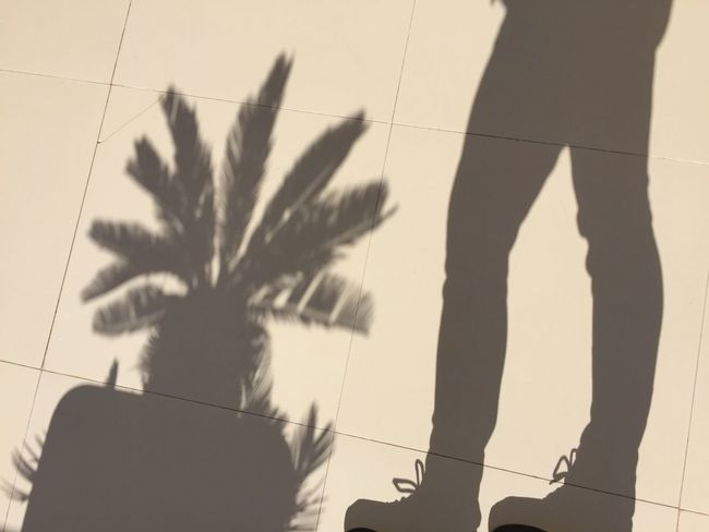 Shadows & Lights Shadow Silhouette Shadow Real People Sunlight One Person Outdoors Day Standing Women Nature People