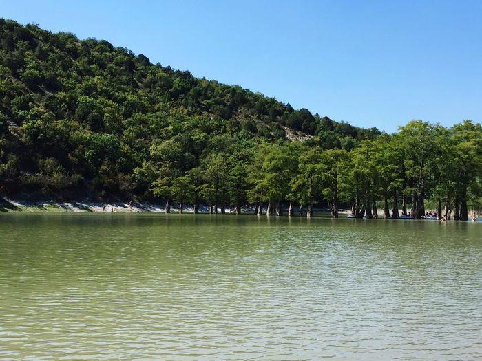Кипарисовое озеро Water озеро