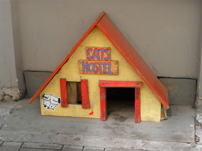 Cat Cat House Hostel Outdoors