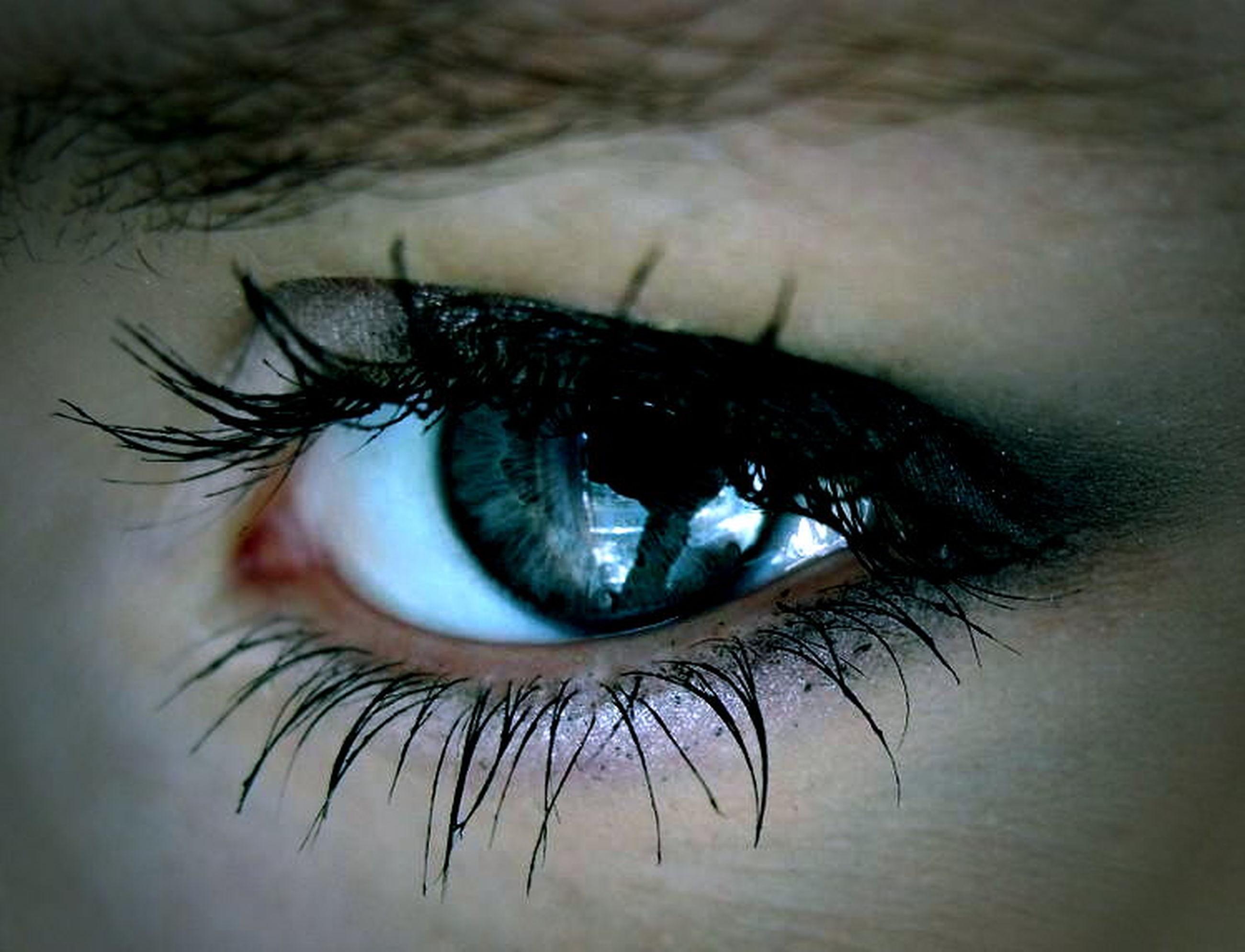 eyelash, human eye, close-up, eyesight, sensory perception, extreme close-up, human skin, part of, one animal, iris - eye, eyeball, unrecognizable person, extreme close up, looking at camera, macro, portrait, animal themes