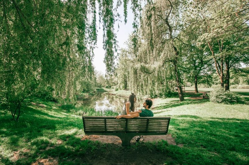 Couple sitting on bench against trees