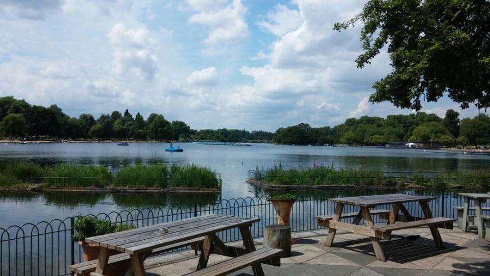 Hydepark London At The Park Landscape