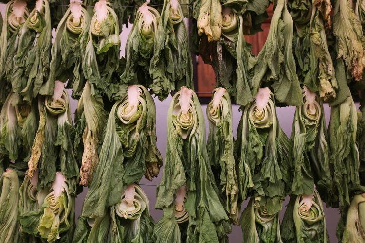 Bok choys hanging on string for sale at market