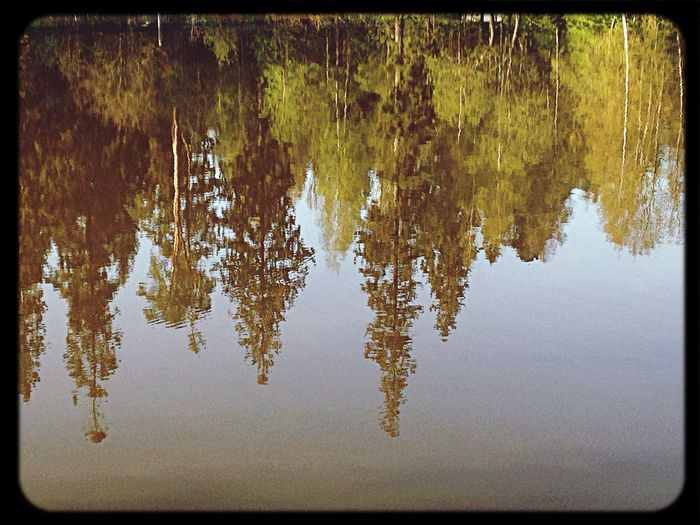 Отражение в...... Enjoying The Sun и пришел Я Nastarovje Traveling