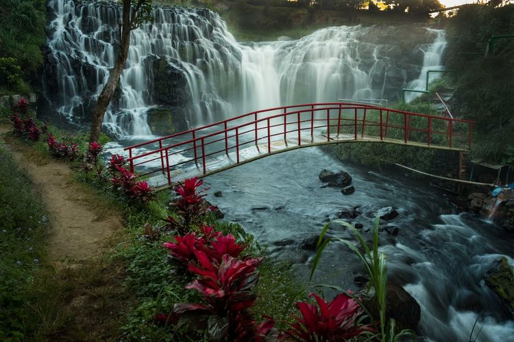 Blawan Waterfall Beauty In Nature Bridge - Man Made Structure Forest Long Exposure Nature Outdoors River Tourism Travel Destinations Tree Water Waterfall