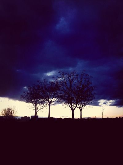 Mist And Darkness ?? Beautifull Nigth