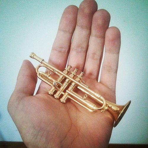 A minha gaita nova. MiniTrumpet Gift Music Miniature Trumpet