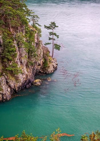 Cliff Coastline Deception Pass High Angle View Nature Outdoors Pacific Northwest  Scenics Sea Tranquil Scene Tranquility Water Waterfront
