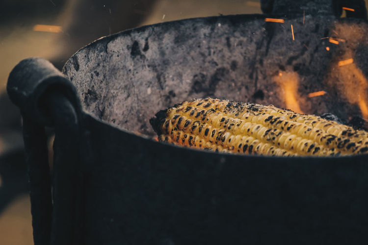 Close-up of corn cobs on barbecue grill