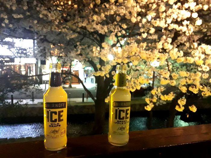 Sakura Cherry Blossoms Kyoto 夜景 Japan 河原町 Tree Flower Bottle In Bloom